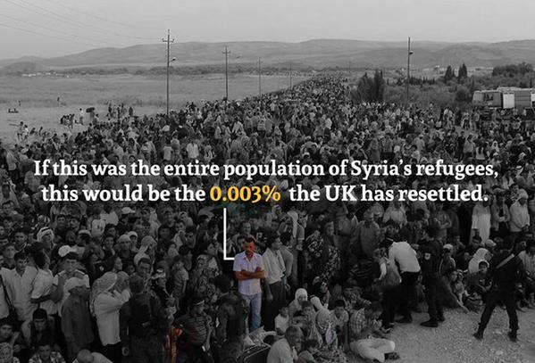 syrian refugees uk percentage